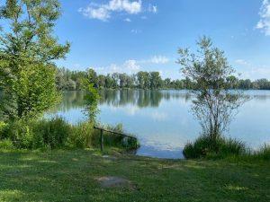 Happinger See Südufer, Raubling
